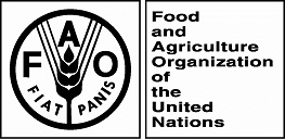 The Food and Agriculture Organization of the United Nations (FAO)